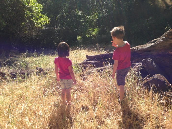The kids are watching a lizard bounce up and down at the tip of that log, threatening them to step back. He's very small.