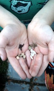 Jack with his various seeds
