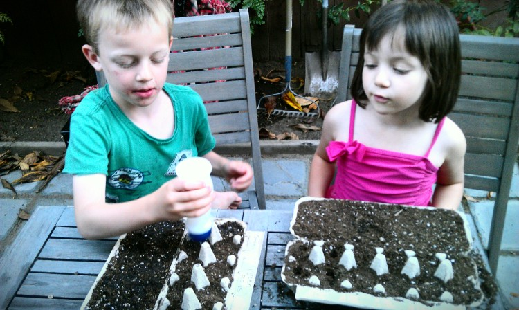 Watering our seedlings