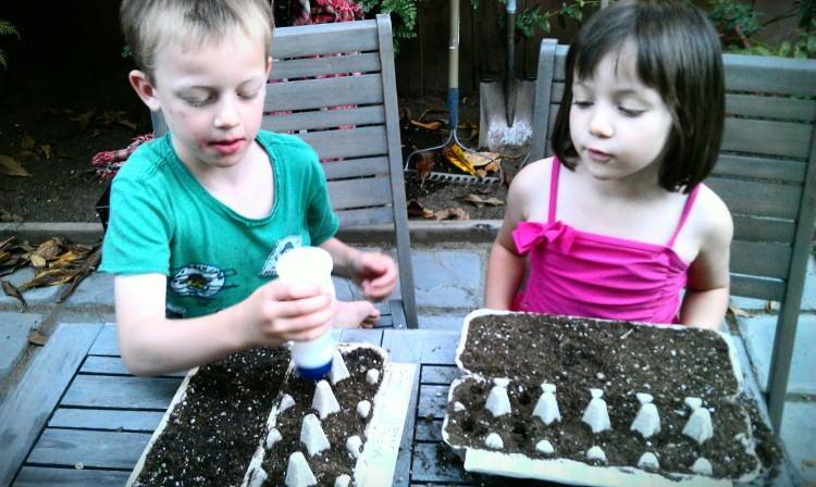 Watering our seedlings