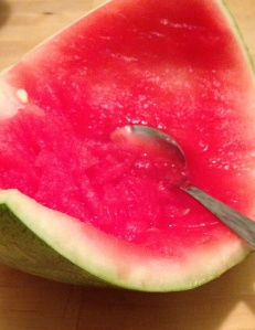Watermelon Leftovers