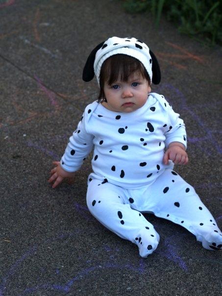 Puppy? Cow?